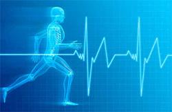 fitness-assessment